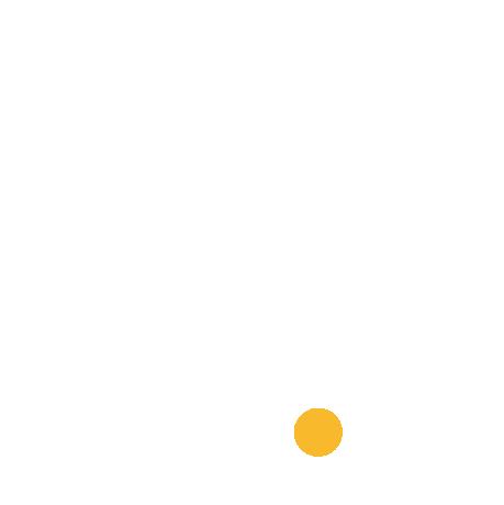 Diamantino Ribeiro Logo